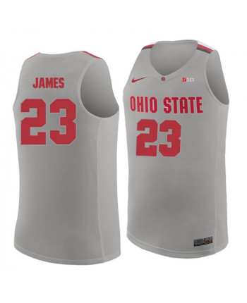 Men's Nike Ohio State Buckeyes 23 James Authentic Gray Jersey